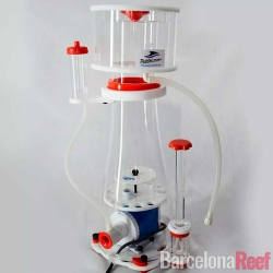 Comprar Skimmer Bubble Magus Curve A-8 online en Barcelona Reef